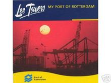 Lee_towers_1